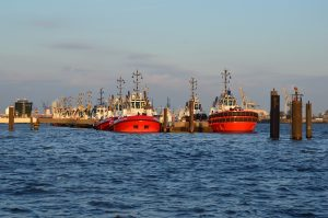 heavy duty marine coating protects ocean cargo ships